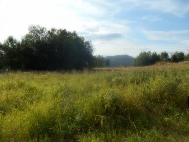 Prodej stavební pozemek , Skalice u České Lípy, 1340 m2