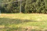 450. Prodej krásného rovinatého pozemku určeného k zástavbě, o výměře 1725 m2, v obci Bělá pod Pradědem, část Domašov 1