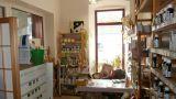 Pronájem nebytových prostor, centrum Šumperka 5