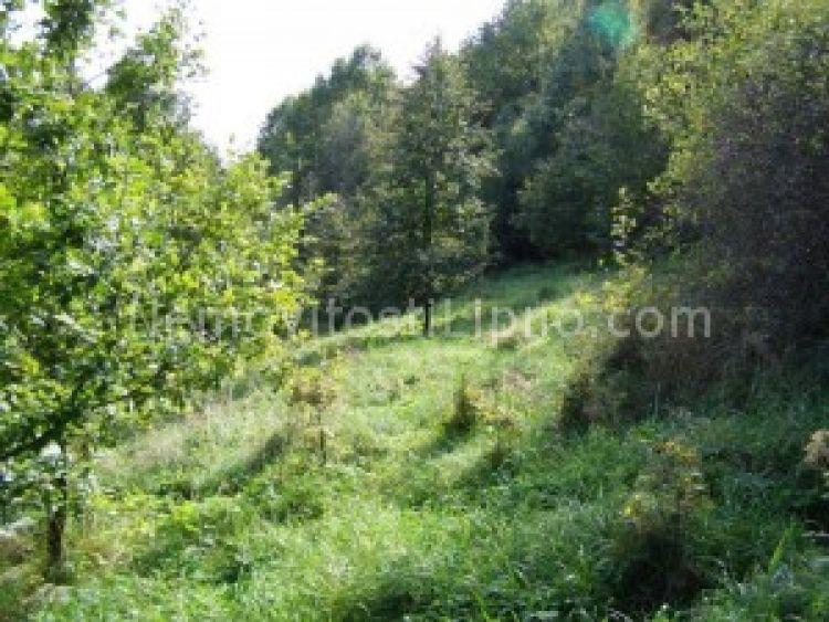 Prodej pozemku Český Krumlov, Plešivec ,krásný výhled na město