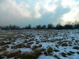 Prodej tří rovinatých pozemků ve městě Zlaté Hory 10
