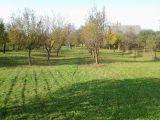 Prodám zahradu v Lobodicích o výměře 1.734m2 2