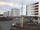 Pronájem bytu – novostavba Uhříněves 1