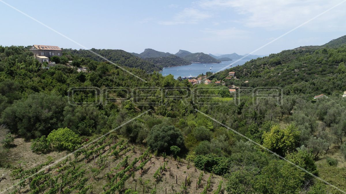Object 100 m2 and agricultural land 23.260 m2 in Sipanska Luka, Dubrovnik