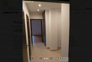 Pronájem bytu 2+1 11