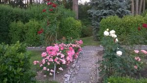 idealni RD s velkou zahradou-Plzen-sever 11