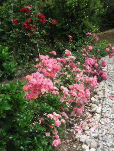 idealni RD s velkou zahradou-Plzen-sever 15