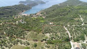 Object 100 m2 and agricultural land 23.260 m2 in Sipanska Luka, Dubrovnik 9