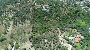 Object 100 m2 and agricultural land 23.260 m2 in Sipanska Luka, Dubrovnik 7