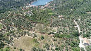Object 100 m2 and agricultural land 23.260 m2 in Sipanska Luka, Dubrovnik 6
