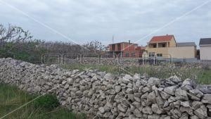 Building land, 4.500m2, Povljana, Croatia 8