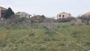 Building land, 4.500m2, Povljana, Croatia 9