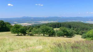 18 ha pozemek s územním plánováním pro developerský projekt 5