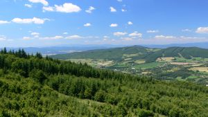 18 ha pozemek s územním plánováním pro developerský projekt 9
