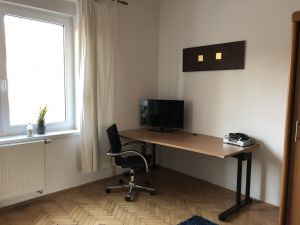 Zarizeny moderni byt v Plzne 9
