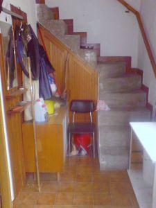 Prodej nemovitosti Vesec čp.8 (u Kovářova) 2
