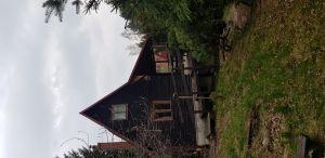 chata u lesa na prodej 2