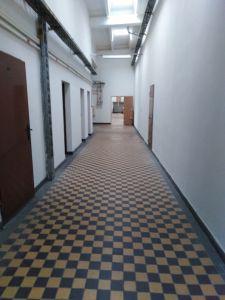 Pronájem nebytových prostor 150m2 v Olomouci, Hodolany 5