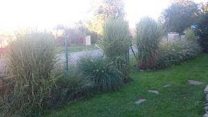 Prodej rodinného domu s velkou zahradou 4