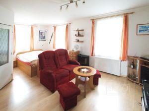 Prodej bytu 1+1, 41 m², České Budějovice - Havlíčkova kolonie 7