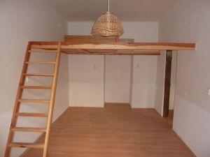 Tichý byt v centru Prahy (Albertov) k pronájmu 1
