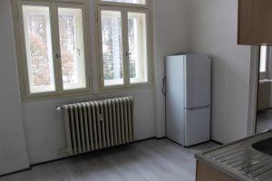 Dlouhodobý pronájem bytu 1+1 v centru Mar. Lázní 3