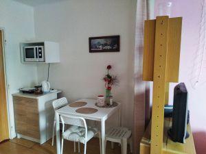 Pronájem bytu 1+kk, 36 m2, Banskobystrická, Praha 6-Dejvice 5