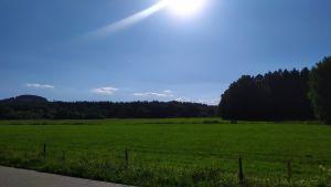 Pozemky Dolní Dvořiště 5