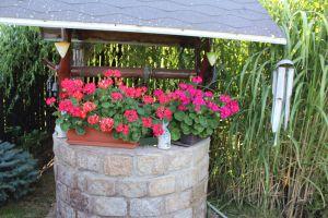 Prodám zahradu s obytnou chatou u Chomutova 18