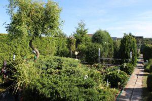 Prodám zahradu s obytnou chatou u Chomutova 15