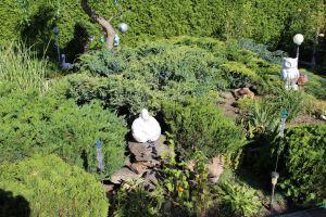 Prodám zahradu s obytnou chatou u Chomutova 10