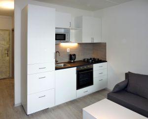 pronájem krásného bytu 1+1 s lodžií 40,5 m² 1