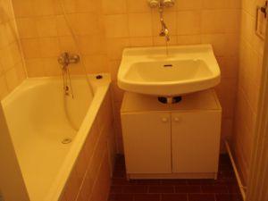 Pronájem bytu 1+1 Olomouc 4