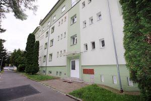 Nabídka bytu 2+1 (60m2) 7