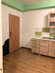 Pronájem bytu Karlovy Vary 4