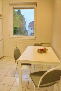 Pronájem bytu 2+kk 43 m2 v zeleni 14