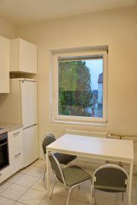 Pronájem bytu 2+kk 43 m2 v zeleni 5