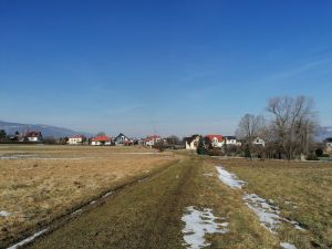 Zemědělský pozemek, orná půda 2 700 m2 s výhledem na Skřičné 3