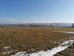Zemědělský pozemek, orná půda 2 700 m2 s výhledem na Skřičné 4