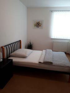 Pronájem bytu (dlouhodobě) 7