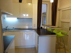 Pronájem zařízeného bytu 2+1, 50 m2, U Svobodárny, Praha 9 1
