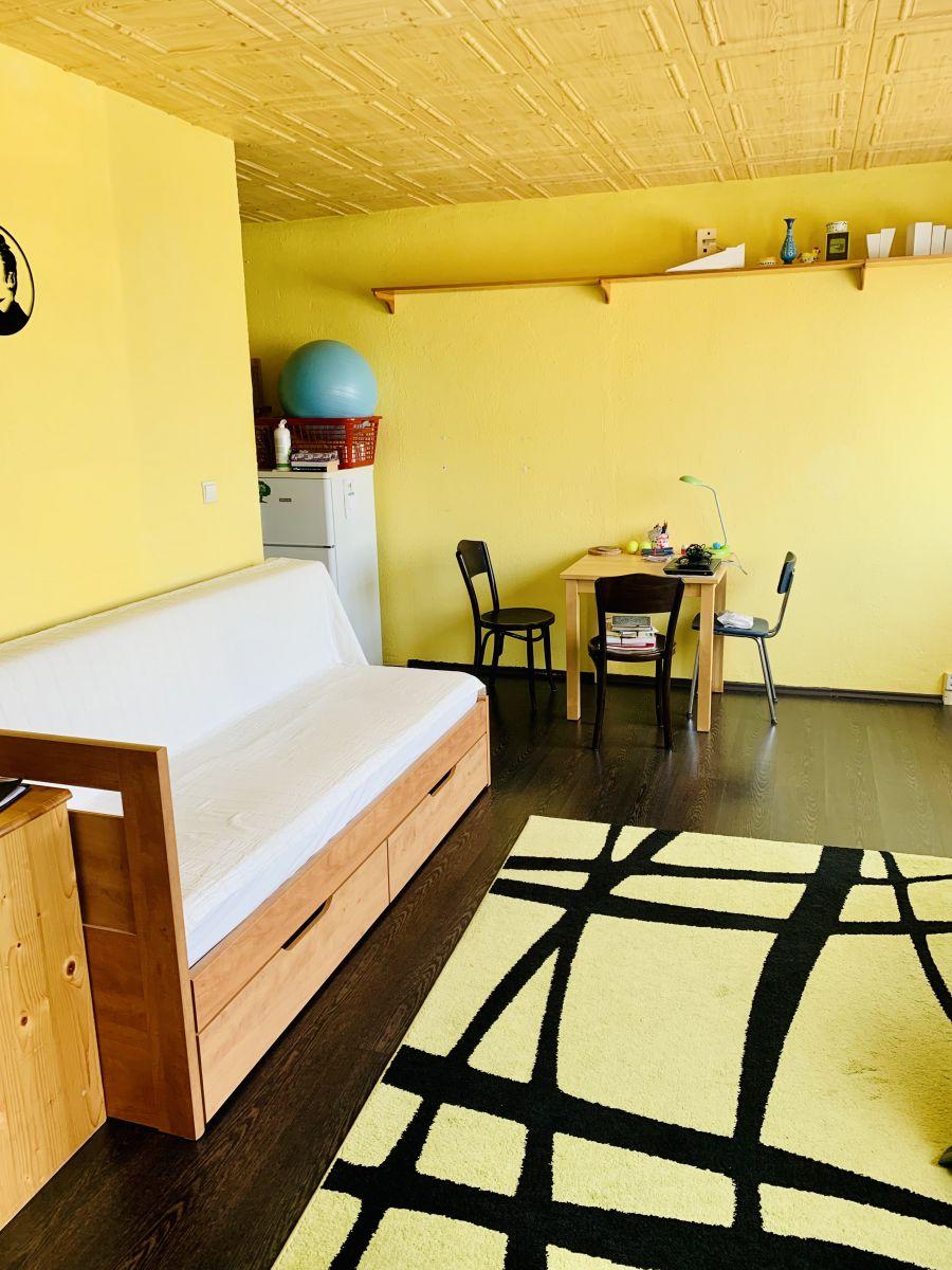 Slunný byt 1kk 35m2 kousek od metra Nové Butovice