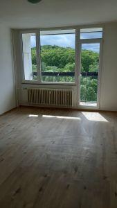 Pronájem bytu 2+1 61m²       3