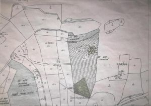 Prodej lesnich pozemku v Jihoceskem Kraji 2