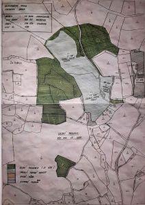 Prodej lesnich pozemku v Jihoceskem Kraji 3